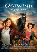 Movie poster Wicher 5